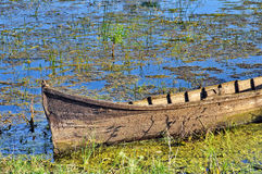 Boat in Danube Delta royalty free stock image
