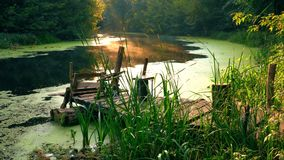 Old fishing pier on river stock video footage