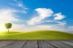 Free Old Wooden Floor Beside Green Field On Slope And Tree With Blue Sky And Clouds Background Stock Photos - 182822673