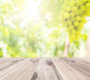 Old wooden floor in front of abstract blur grape farm background Stock Images