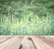 Old wooden floor in front of blur vintage nature background Stock Photos