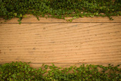Old wooden floor texture background with green leaves Stock Photo