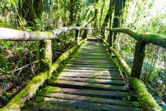Old wooden foot bridge Royalty Free Stock Image