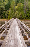 An old wooden foot bridge running over a swampy lake Stock Photos