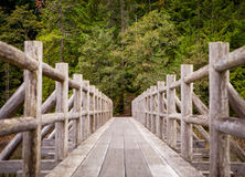 An old wooden foot bridge running over a swampy lake Royalty Free Stock Photo