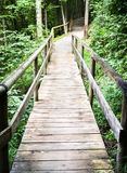 Old wooden footbridge Stock Images