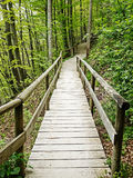 Old wooden footbridge Stock Photos