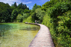 Old wooden footpath in Plitvice lakes in Croatia. Old wooden footpath with clear water green grass and trees in National Park Plitvice Lakes in Croatia Royalty Free Stock Photos