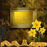 Old wooden frame with bunch of flower narcissus Stock Photos