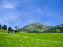 Old wooden framhouse in the mountains Stock Photography