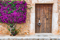 Old Wooden Front Door Royalty Free Stock Image