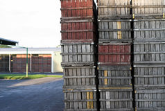 Old wooden fruit crates. Stacked near warehouse Stock Photo