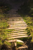 Old Wooden garden pathway Stock Photos