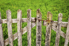 Old Wooden Gate royalty free stock images