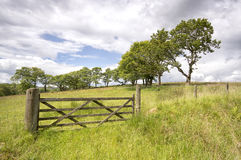Old wooden gate and fence in a green field Stock Photography