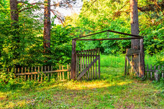 Old wooden gate in forest Stock Images