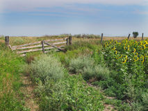 Old wooden gate in a prairie pasture Royalty Free Stock Photos