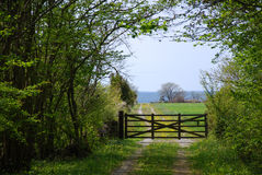 Old wooden gate in a spring green landscape Royalty Free Stock Photos