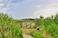 Old Wooden Gate to Paradise Stock Photos