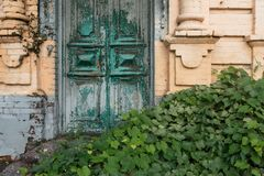 An old wooden green door. Around is a lot of greenery. Cloudy weather royalty free stock image