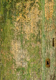 An old wooden green door with a rusty lock. Royalty Free Stock Images