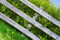 Old wooden grey fence covering green shrub bush in country side village. Diagonal photo, Good background.  royalty free stock images