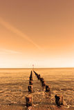 Old wooden groyne Stock Images
