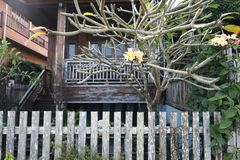 Old wooden house behind of trees and wooden fence. Natural elegant wooden house design Royalty Free Stock Photography