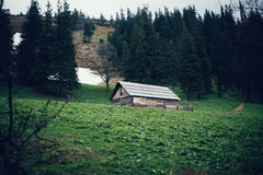 Old wooden house in the Carpathian forest Stock Images