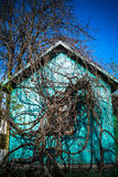 Old wooden house in the country braided vine royalty free stock photos