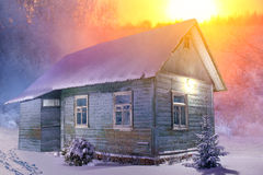 Old wooden house in forest Stock Photography