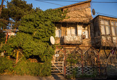 Old wooden house. In the ivy in Tbilisi Stock Image