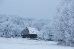 Old wooden house in the middle of the forest in winter Stock Photos