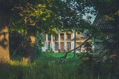 Old wooden house among trees and tall weeds royalty free stock image