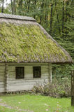 Old wooden house, white with a thatched roof covered with moss i Stock Image