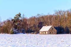 Old wooden house in winter Royalty Free Stock Images