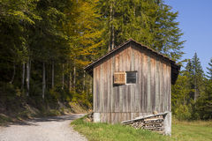 Old wooden hut cabin in forest Royalty Free Stock Images