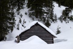 Old wooden hut covered with snow in winter forest at gray day Royalty Free Stock Images