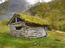 Old wooden hut in forest. Norwegian mountains Stock Photography