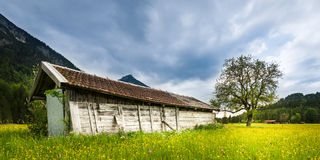Old wooden hut in green meadow Stock Images