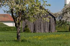 Old wooden hut. In south germany springtime blue sky sunny holiday Royalty Free Stock Photos