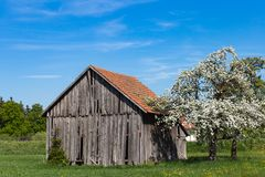 Old wooden hut. In south germany springtime blue sky sunny holiday Royalty Free Stock Images