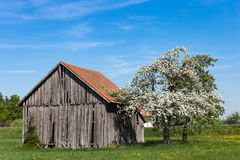 Old wooden hut. In south germany springtime blue sky sunny holiday Royalty Free Stock Photography