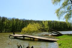 Old wooden jetty over the river among forest stock photography