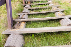 Old wooden ladder Stock Photography