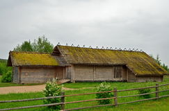 Old wooden log barn in the Museum of Pushkin Mikhailovskoe villa Royalty Free Stock Photo