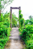 Old wooden long rope bridge cross the stream Royalty Free Stock Image