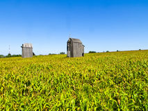 Old wooden mill without wings on the field Royalty Free Stock Photo