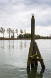 Old wooden mooring post on a cloudy day Royalty Free Stock Photos