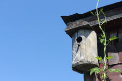 Old wooden nesting box on the rooftop Royalty Free Stock Photography